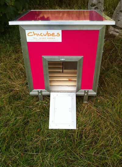 plastic-chicken-house-3-hens-hot-pink-