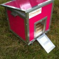 plastic-chicken-house-3-hens-hot-pink-2-