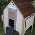 wooden-chicken-house-8-hens-cream-2
