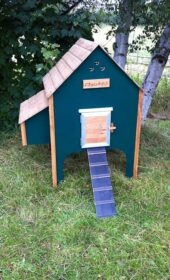 wooden-chicken-house-8-hens-green