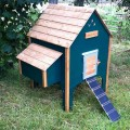 wooden-chicken-house-8-hens-green-3
